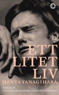 bokomslag Ett litet liv