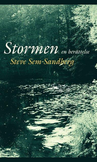bokomslag Stormen : en berättelse