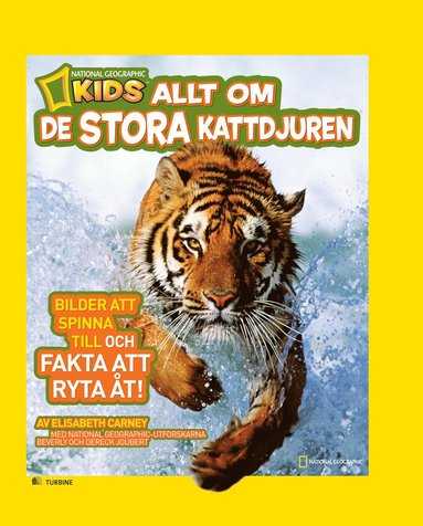 bokomslag Allt om de stora kattdjuren
