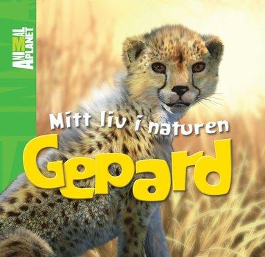 bokomslag Mitt liv i naturen. Gepard