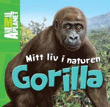 bokomslag Mitt liv i naturen. Gorilla