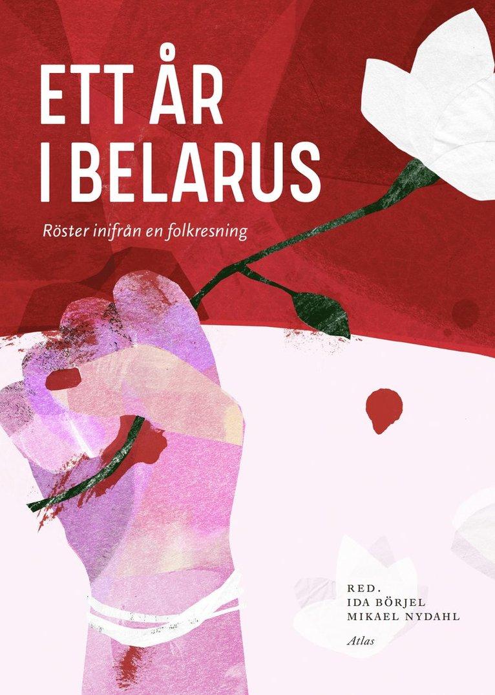 Ett år i Belarus : Röster inifrån en folklig resning 1