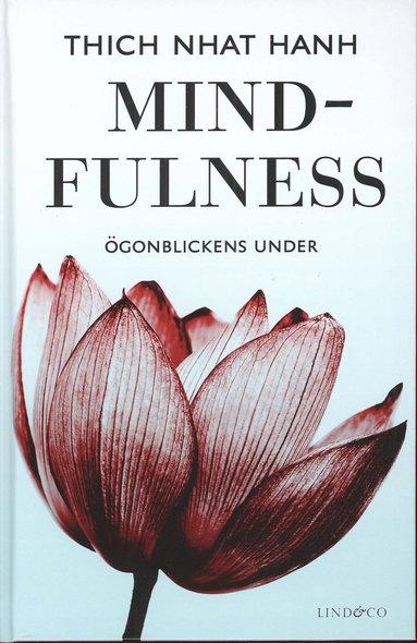 bokomslag Mindfulness : ögonblickens under