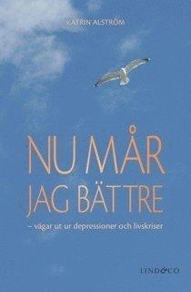 bokomslag Nu mår jag bättre : vägar ut ur depressioner och livskriser