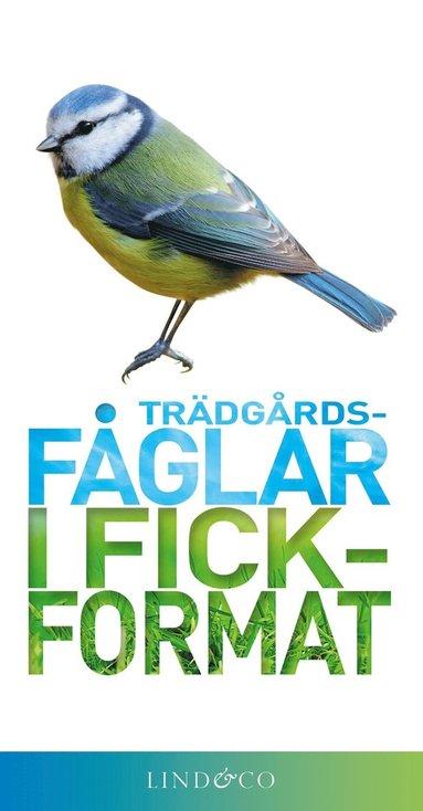 bokomslag Trädgårdsfåglar i fickformat