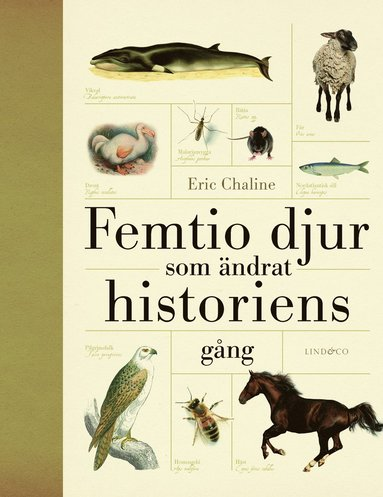 bokomslag Femtio djur som ändrat historiens gång
