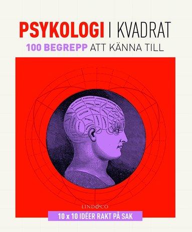 bokomslag Psykologi i kvadrat : 100 begrepp att känna till