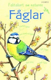 bokomslag Faktakort om naturen : Fåglar