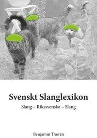 bokomslag Svenskt slanglexikon