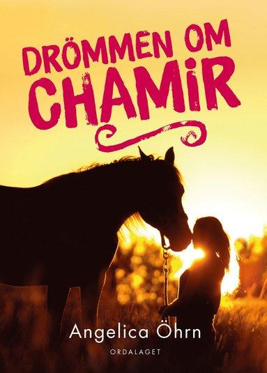 bokomslag Drömmen om Chamir