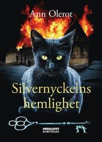 bokomslag Silvernyckelns hemlighet