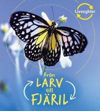 bokomslag Från larv till fjäril