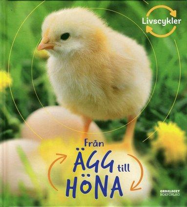 bokomslag Från ägg till höna