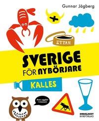 bokomslag Sverige för nybörjare