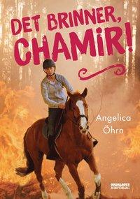 bokomslag Det brinner, Chamir!
