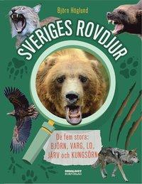 bokomslag Sveriges rovdjur : de fem stora: björn, varg, lo, järv och kungsörn