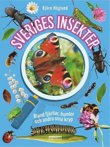 bokomslag Sveriges insekter : bland fjärilar, humlor och andra små kryp