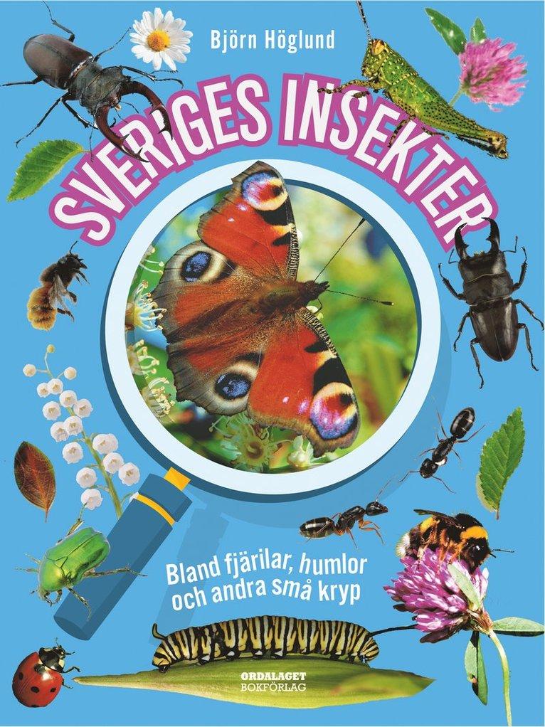 Sveriges insekter : bland fjärilar, humlor och andra små kryp 1
