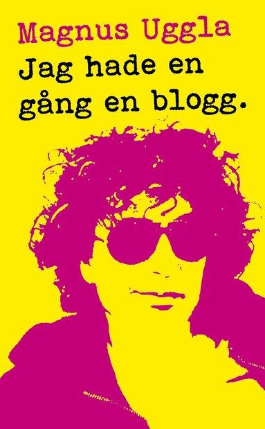 bokomslag Jag hade en gång en blogg