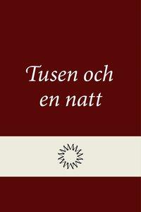 bokomslag Tusen och en natt