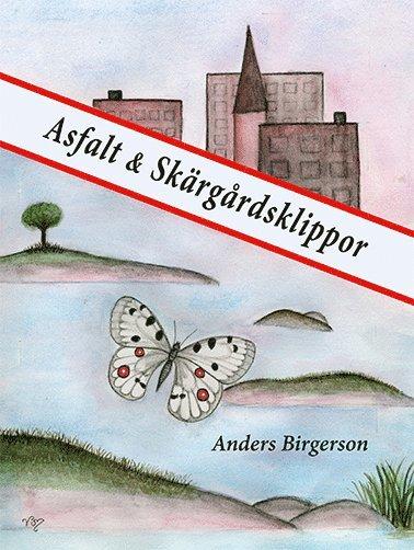 bokomslag Asfalt och skärgårdsklippor
