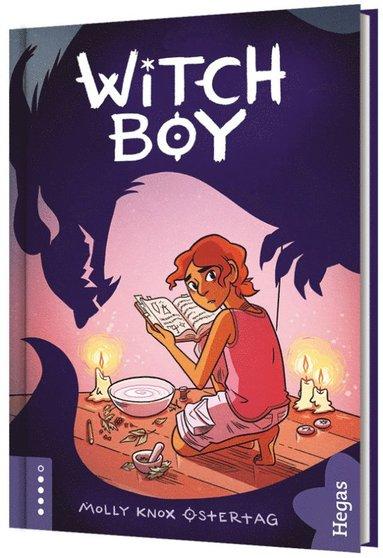 bokomslag Witchboy