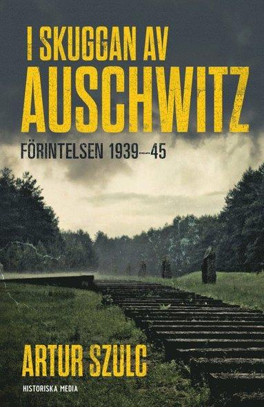 bokomslag I skuggan av Auschwitz : förintelsen 1939-45
