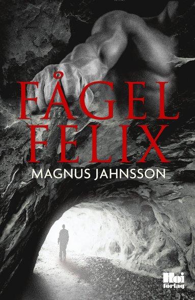 bokomslag Fågel Felix
