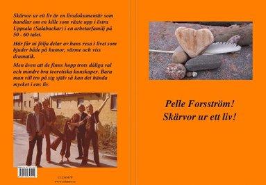 bokomslag Skärvor ur ett liv