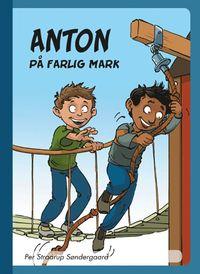 bokomslag Anton på farlig mark