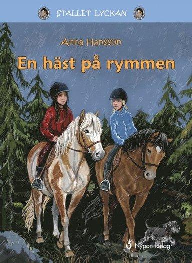 bokomslag En häst på rymmen