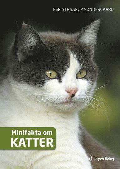 bokomslag Minifakta om katter