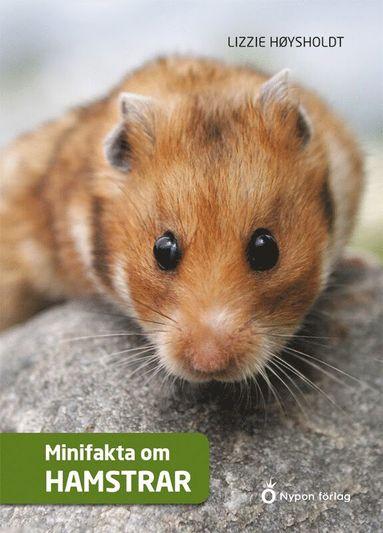 bokomslag Minifakta om hamstrar