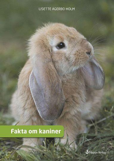 bokomslag Fakta om kaniner