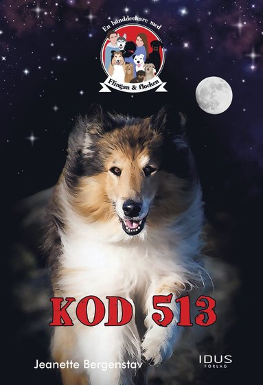 bokomslag Kod 513
