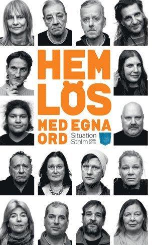 bokomslag Hemlös - med egna ord : Situation Sthlm 2008-2014