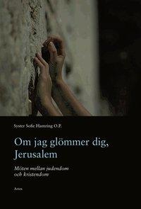 bokomslag Om jag glömmer dig, Jerusalem : möten mellan judendom