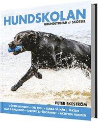 bokomslag Hundskolan : grundlydnad & skötsel
