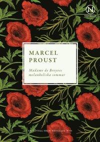 bokomslag Madame de Breyves melankoliska sommar