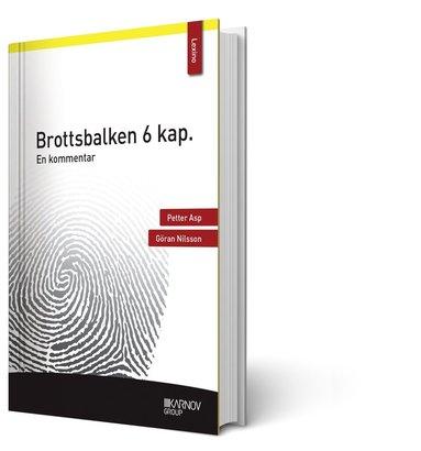 bokomslag Brottsbalken 6 kap. : en kommentar