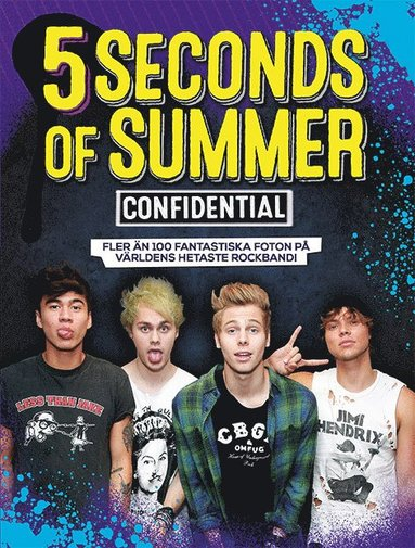 bokomslag 5 Seconds of Summer : confidential