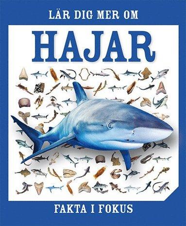 bokomslag Fakta i fokus. Lär dig mer om hajar