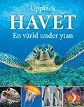 bokomslag Upptäck havet : en värld under ytan