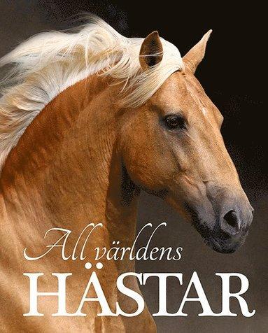 bokomslag All världens hästar