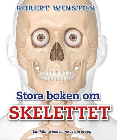 bokomslag Stora boken om skelettet : lär känna benen inne i din kropp