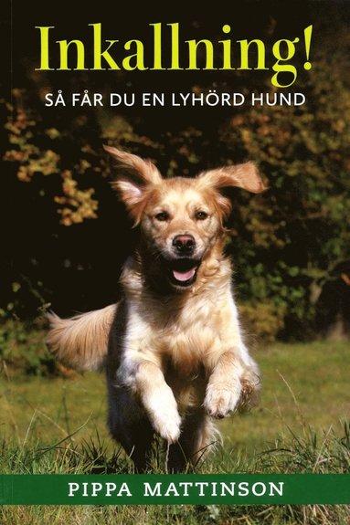 bokomslag Inkallning! : så får du en lyhörd hund