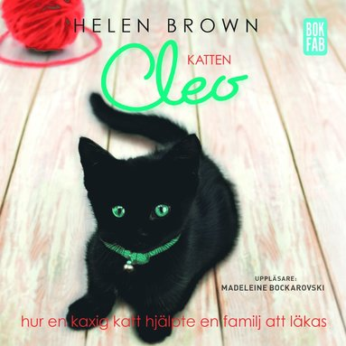 bokomslag Katten Cleo : hur en kaxig katt hjälpte en familj att läkas