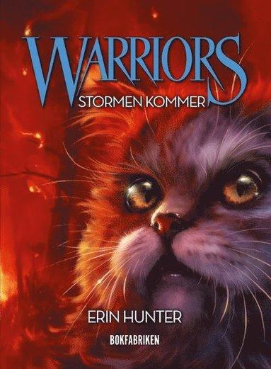 bokomslag Warriors. Stormen kommer