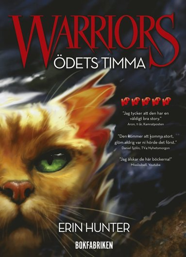 bokomslag Warriors 1. Ödets timma