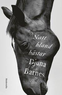 bokomslag Natt bland hästar